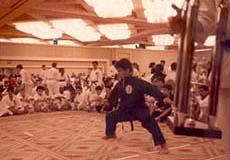 Sub-Campeón Mundial en Katas 1987